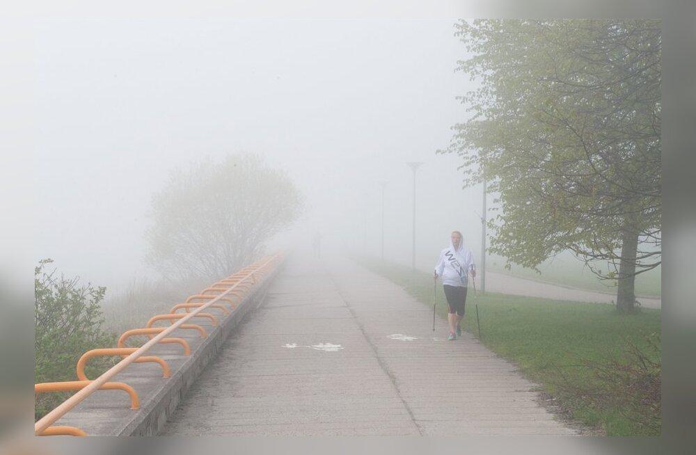 Pomerants: Eesti pingutustel ei ole suurt mõtet, kui näiteks Hiina või Ameerika kliimaleppega kaasa ei tule