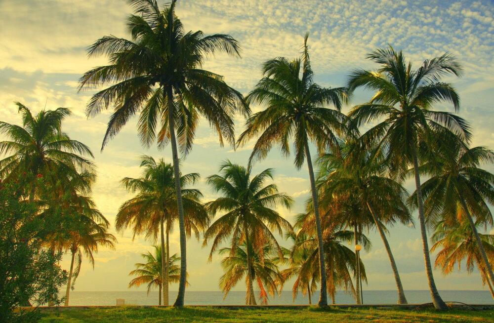 Kuuma Ghana 5 parimat rannaparadiisi