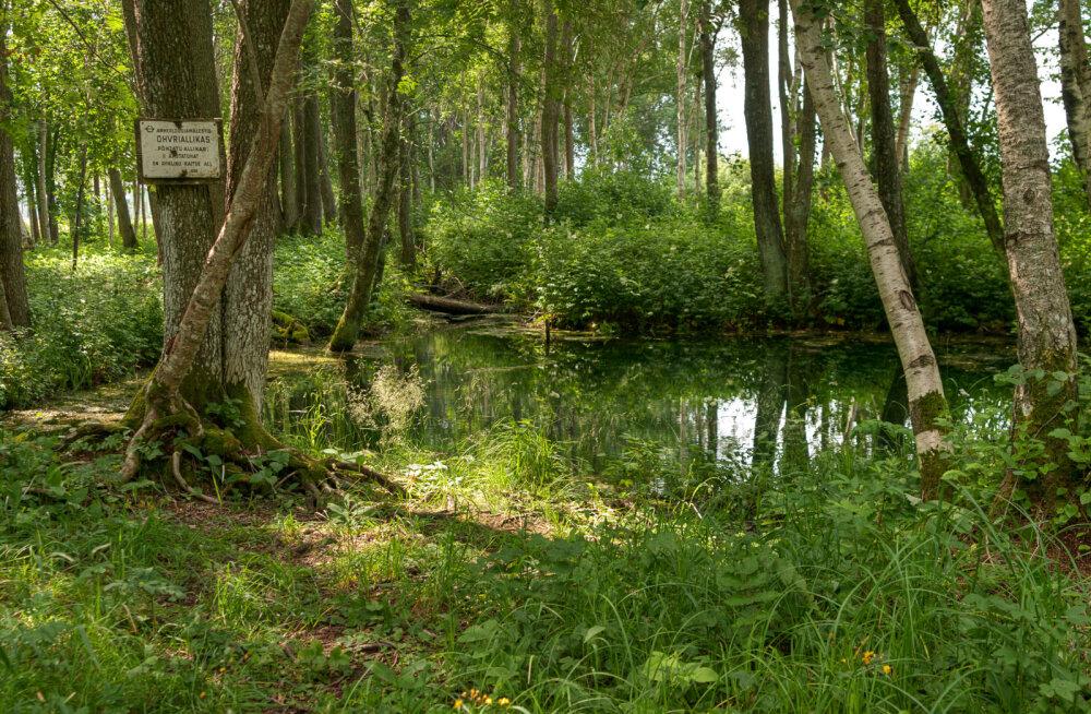 """Ohvriallikas """"Põhjatu allikas"""" Saaremaal, endises Kaarma vallas, Pähkla külas"""