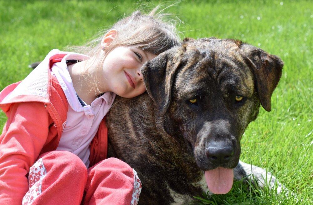 4 sammu: kuidas õpetada lapsi loomi austama?