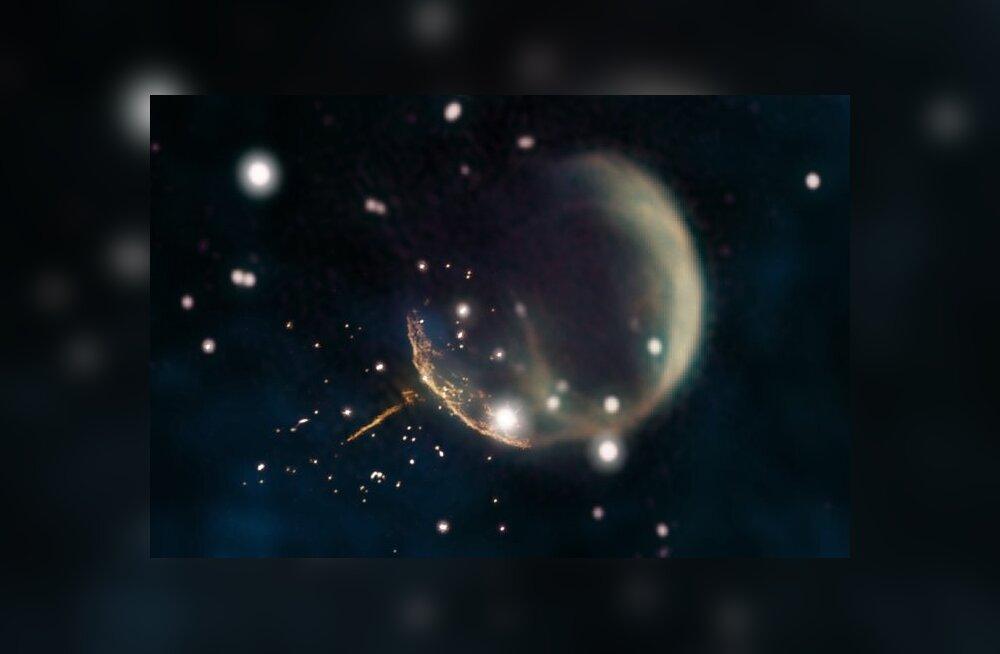 Meie galaktikas leidub hulk kummalisi tähti – need on seitse erilist veidrikku!