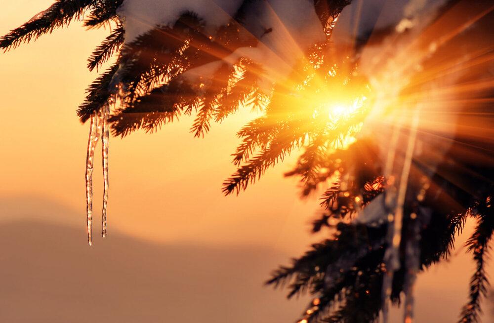 Täna on taliharjapäev: kui saab päikest näha, siis on mehed aasta jooksul terved ja tublid!