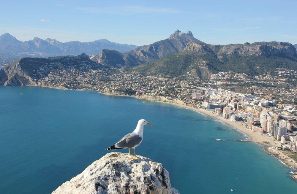 Soodsalt Helsingist Lõuna-Hispaaniasse: edasi-tagasi lennud Alicantesse ja Malagasse vaid 116 eurot!