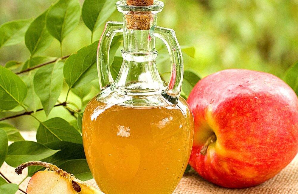 Parim siider valmib hilistest õuntest.