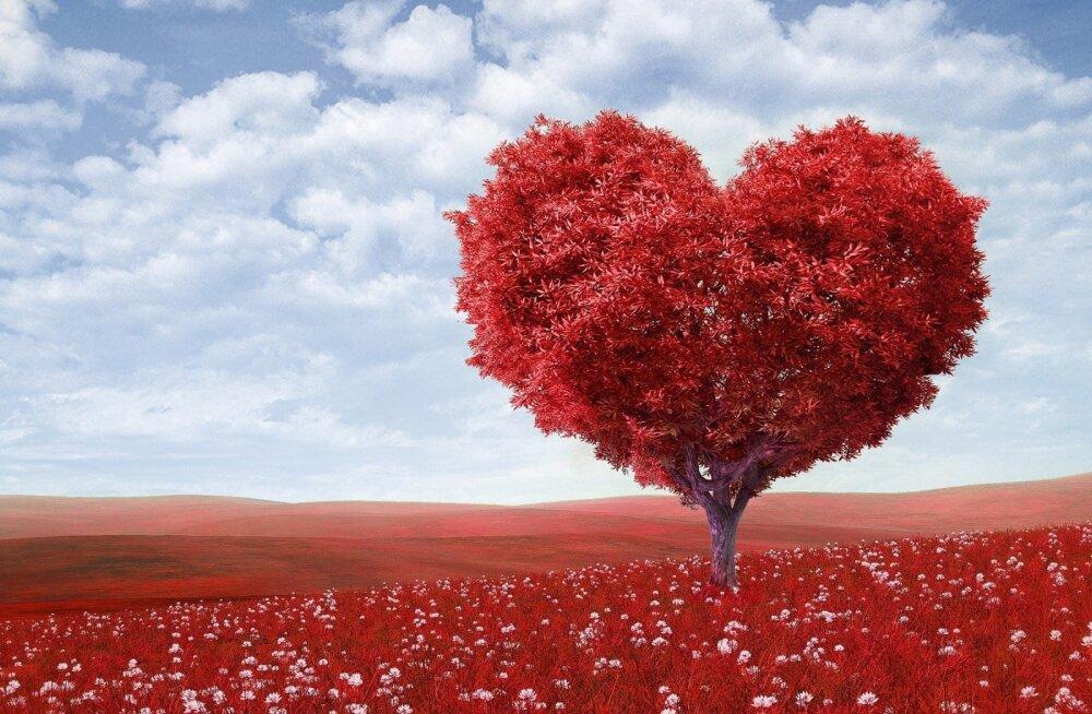 Как найти любовь по знаку зодиака