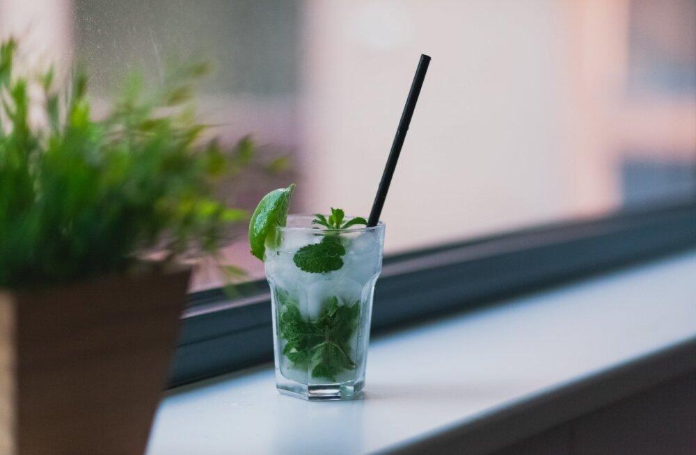 Septembris ei joo! Kui tahad alkoholiga mõneks ajaks lõpparve teha, siis see tegutsemisviis aitab sind kindlasti