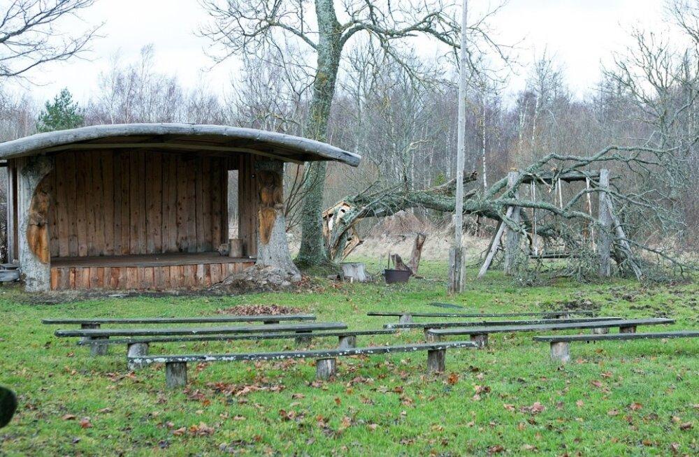 Torm Saaremaal öösel vastu laupäeva 13. dets 2014