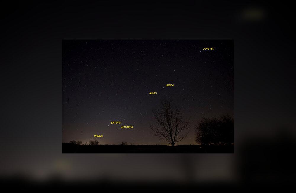 Pilt, mis kordub 20. veebruarini: viis planeeti on koidikul korraga reas