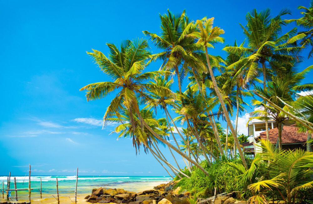 Шри-Ланка ввела бесплатные визы для туристов из 50 стран, включая и Эстонию