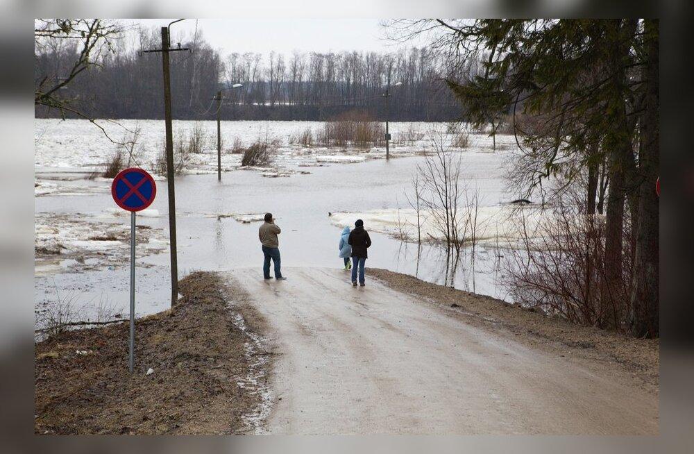 Sindi suurvesi 2013