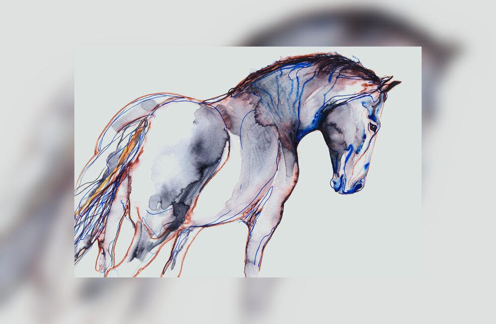 Loomaaias saab näha kunstnik-animalist Sándor Martin Sterni ja tema õpilaste uhkeid joonistusi ja maale