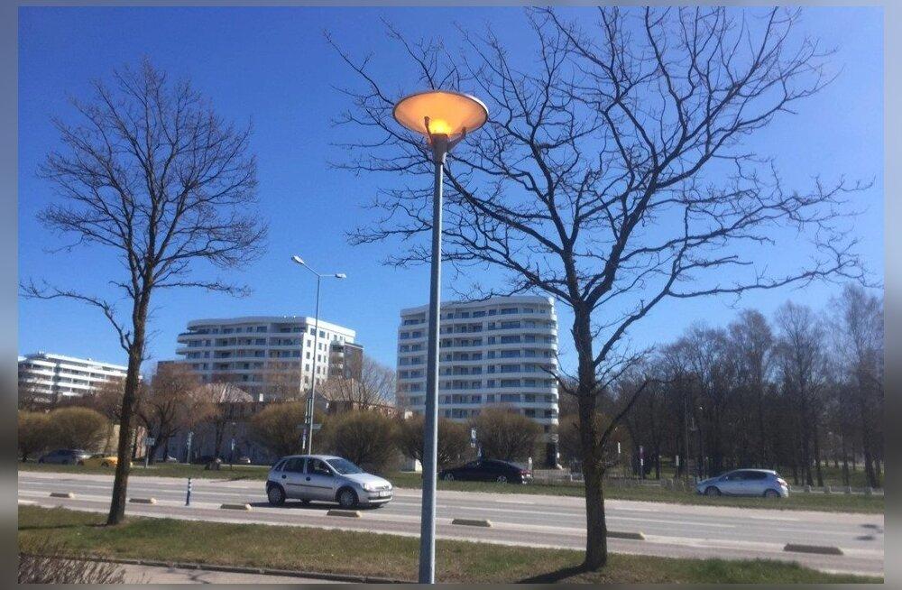 ФОТО: На Рейди теэ в 12 часов дня горели фонари. Что это было?