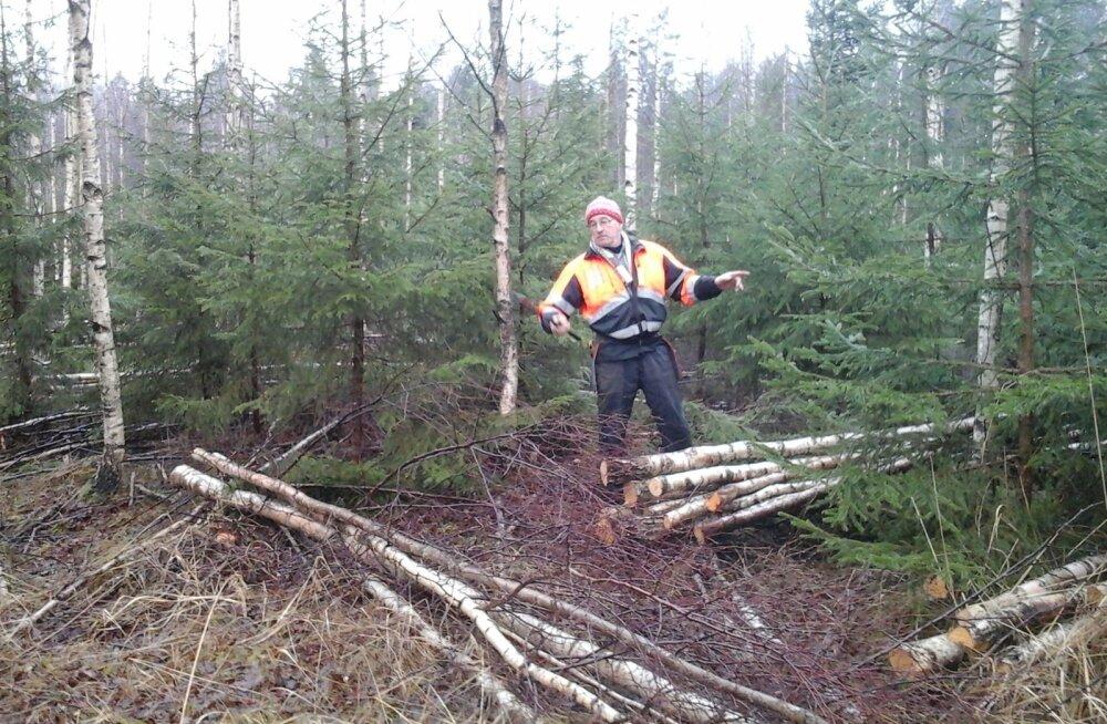 Aivar Mäetagas on välja arvutanud, et virnatäiuse koefitsiendid, mida metsamaterjali ülesostjad kasutavad, on liiga väiksed.