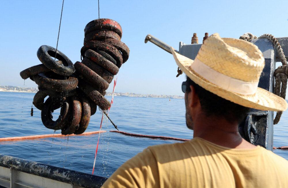 Франция демонтирует искусственный риф из шин. Зачем нужен был этот опасный эксперимент?