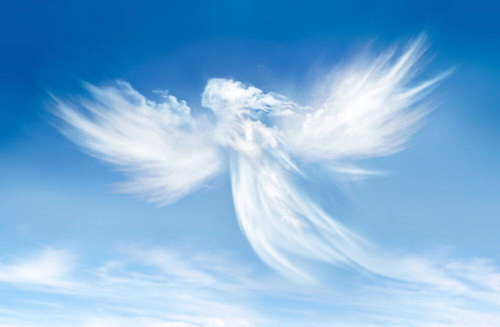 Reiki õpetaja Triin Katriin: kohtumine inglitega on muutnud minu elu