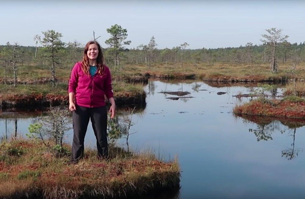 Nädalavahetusel loodusesse! Kolm parimat matkarada Põhja-Eestis, kui aega on rohkem kui üks päev