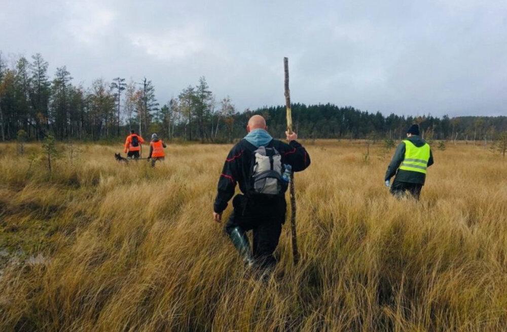 Поиски пропавшего в лесах Причудья нарвитянина последнюю неделю ведут только волонтеры. Что конкретно сделали госслужбы?