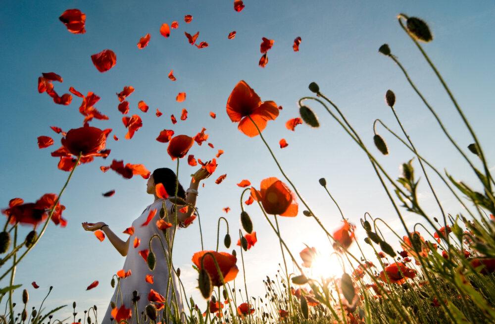 Kadri Luik: õnnelik elu on otsus ja julgus seista enda õnne eest