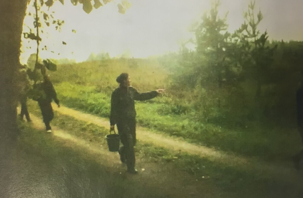 Vene sõjaväevormis seeneline Inna Purge vedas enda järel nelja üle piiri toimetatud vietnamlast. Ettepaneku selliseks äriks tegid talle ja tema elukaaslasele Aleksei Kulvitšile ammused tuttavad Pihkva oblastis.
