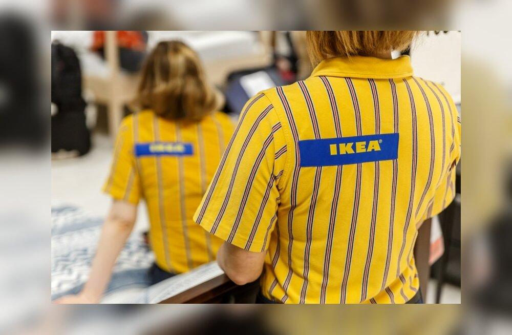 Mööblifirma IKEA palkab Eestis enam kui 40 töötajat: vaata, keda otsitakse