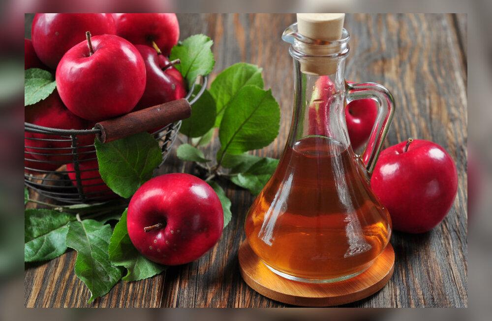 Veiniäädikas – iidne ja moodne imeravim