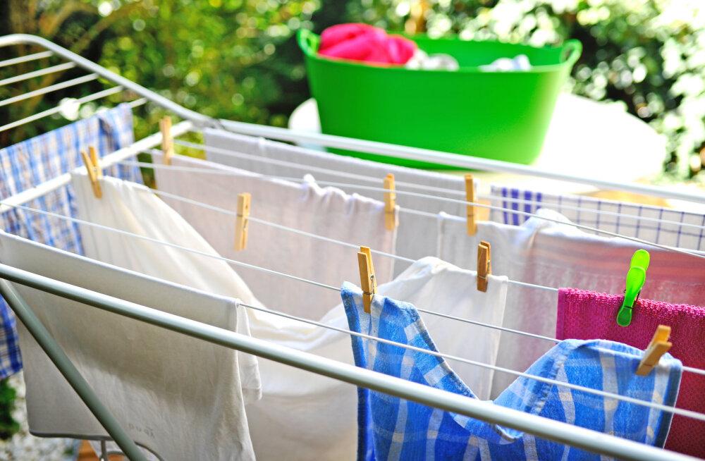 Puust ja punaseks: kui kaua tegelikult tohivad märjad riided pesumasinas olla?