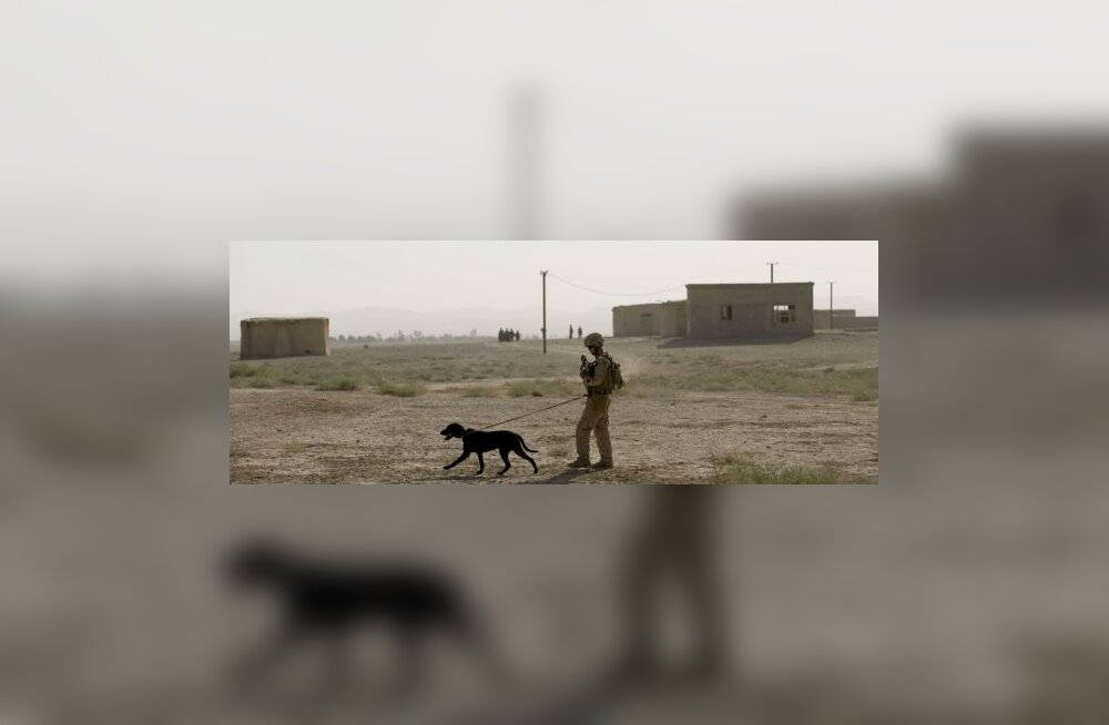 Poliitik: Soome peaks väed Afganistanist ära tooma