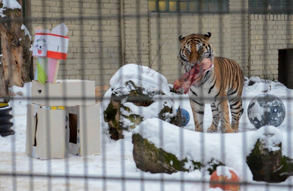 Jõuluvanad loomaaias
