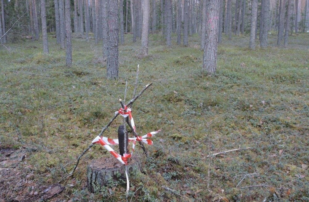 Võrumaa metsast leitud mürsk