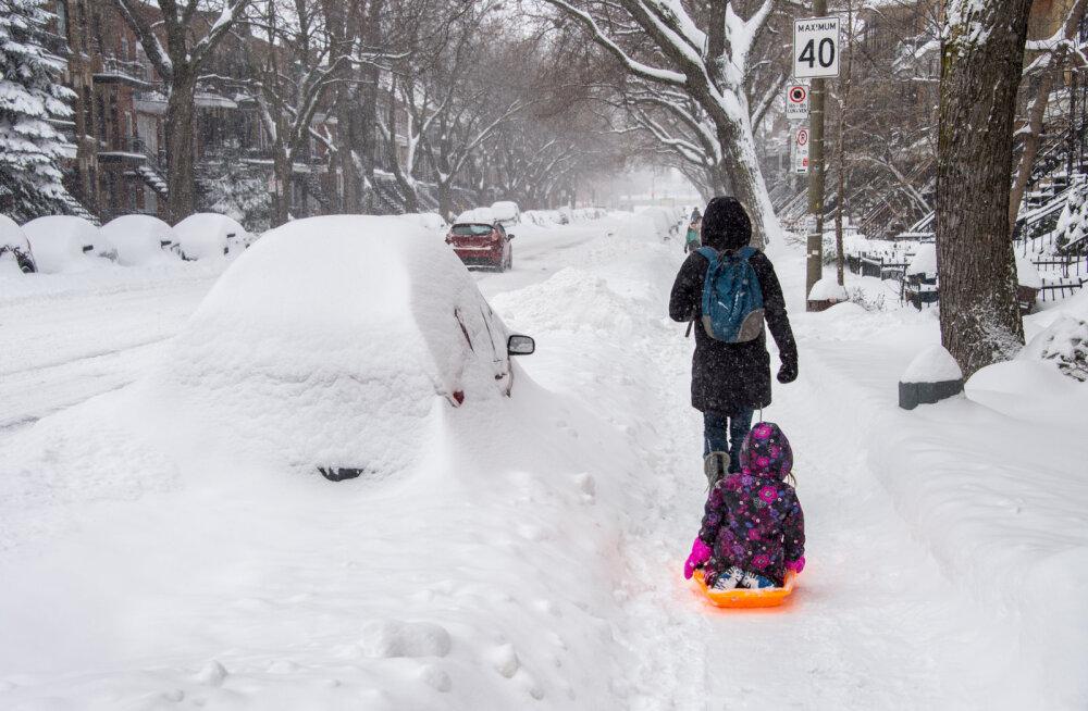Sina hull, kes sa oma bemmiga kimad lumepudrus, ma ei julge sinu pärast enam lapsega tänavale minnagi!