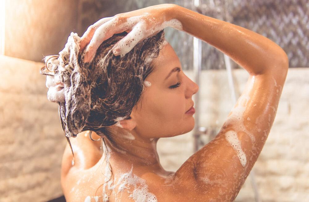 10 asja sinu majapidamises, mida ei tohiks mitte kunagi seksleluna kasutada