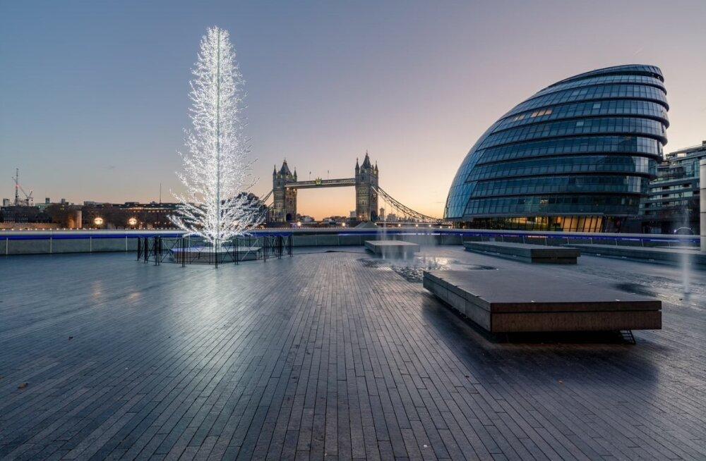 Londoni uut raekoja platsi ehib Eestis disainitud ja toodetud kuusk