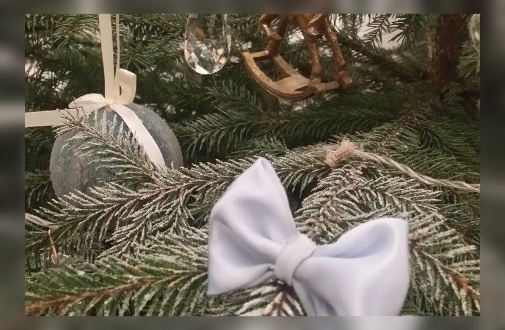 Delfi lugejate jõulukaunistused