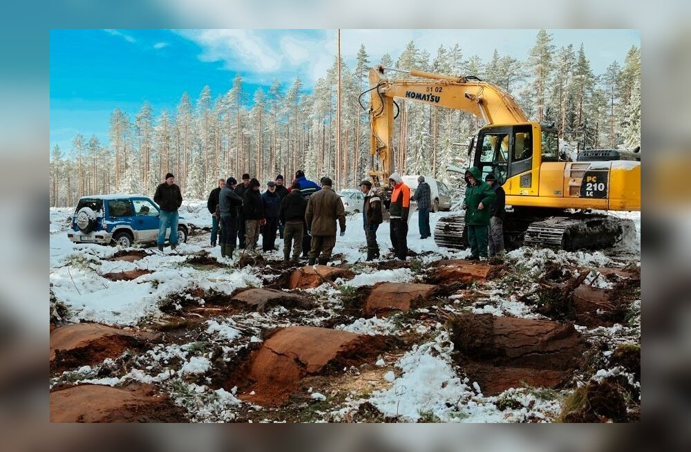 Maapinna n-ö mätastamine Virumaa Metsaühistus. Eestis veel vähe kasutatud maapinna ettevalmistamise viis enne sinna metsataimede istutamist. Aga näib olevat üsna tõhus.