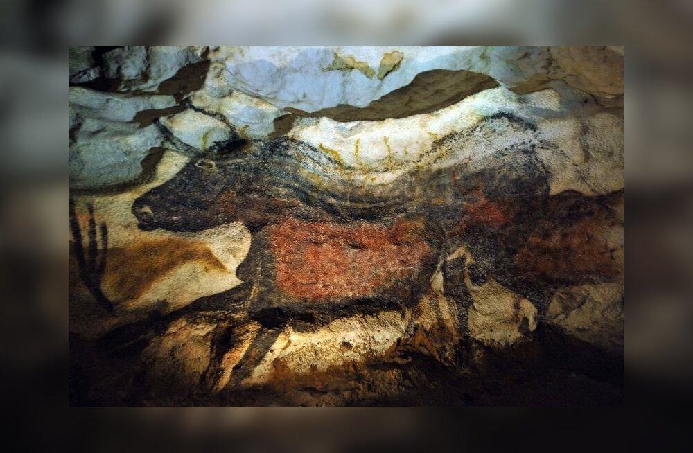 70 aastat Lascaux avastamisest: kas iidsed koopamaalingud jäävad püsima?