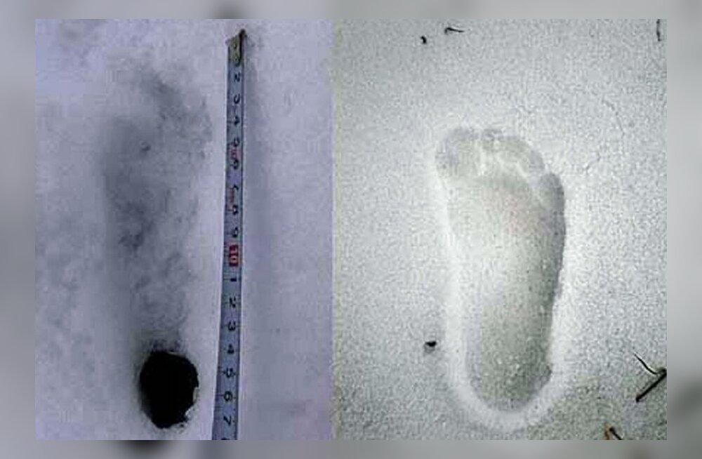Vene teaduste akadeemia: lumeinimese olemasolu on väga tõenäoline