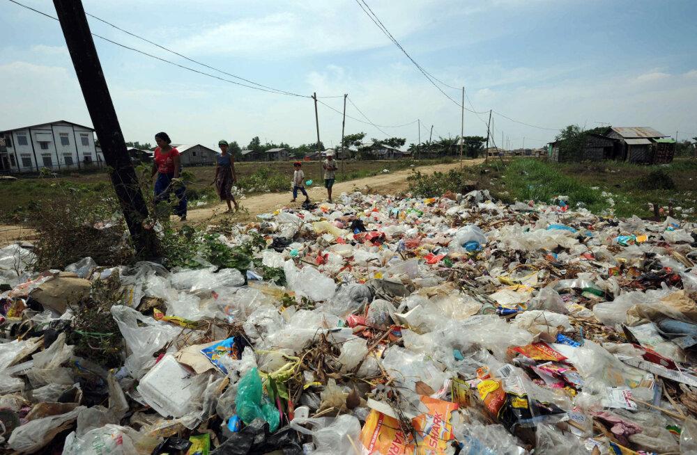 Kas lahendus globaalsele plastikureostusele? Juhuslikult leiti loom, kes on võimeline kilekotid nahka pistma