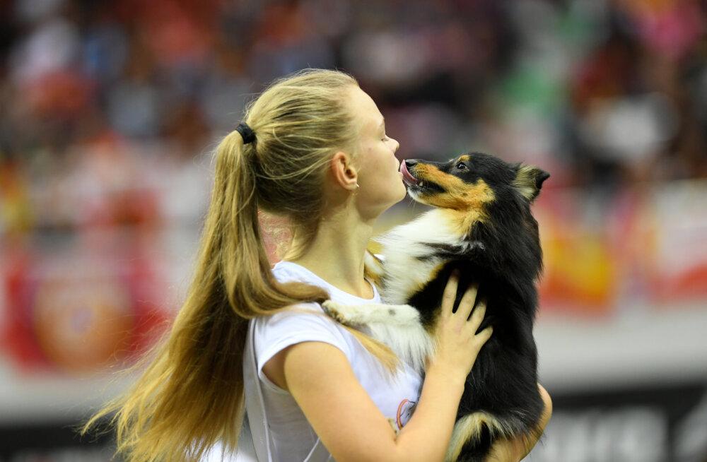 Eesti korraldab 2020. aasta koeraspordi suursündmust: Tallinn täitub tipptasemel koerte ja koerasportlastega