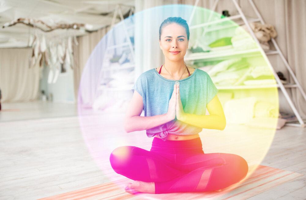 Isehakanu ehk iseendaks hakanu tegutseb oma hinge vibratsioonis
