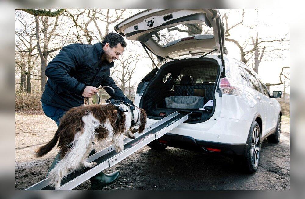 Eksperiment: Kas Nissan X-Trail 4Dogs ehk ehtne koeramobiil karvast sõpra ka päriselt kõnetab?