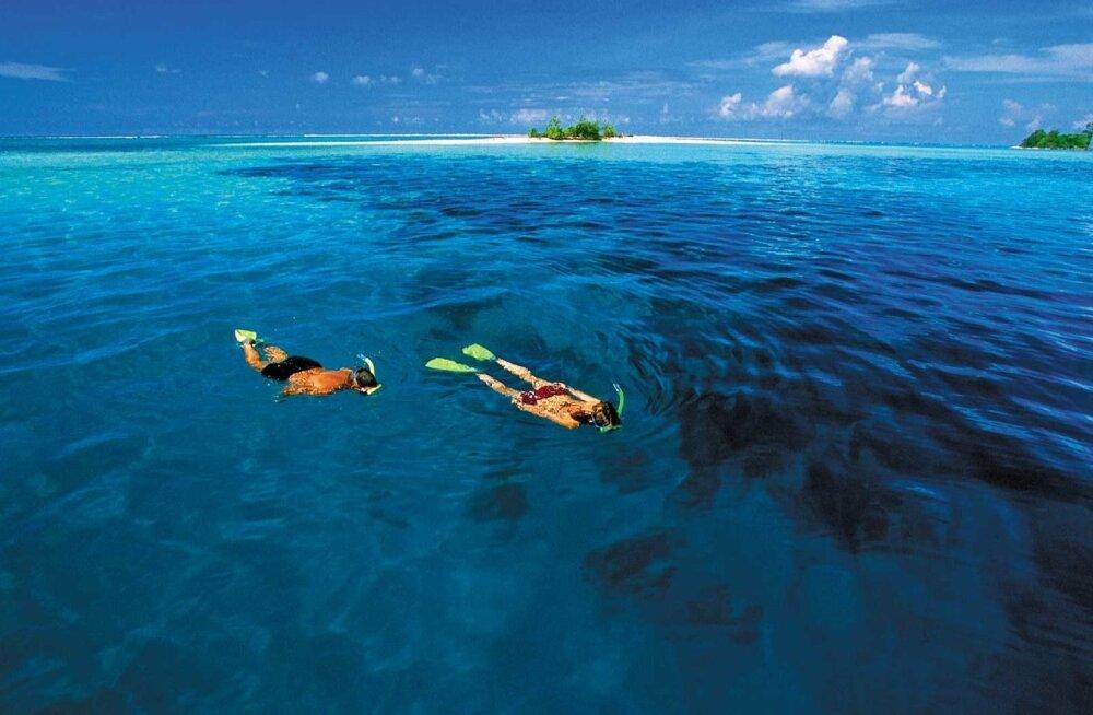 Saalomoni saared
