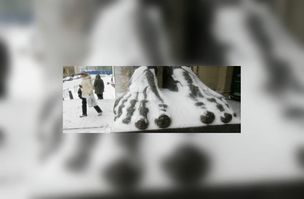 Daily Telegraph: Eestit ootab talvel ees šokk