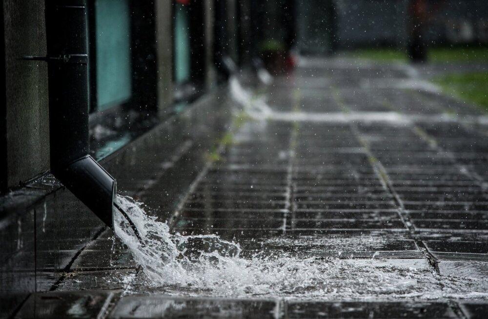 Vihm Tallinnas