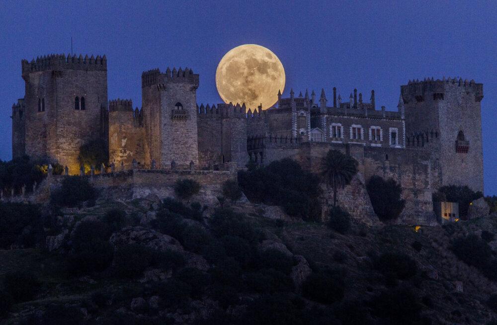 В Испании туристам сдают в аренду замок диснеевской принцессы