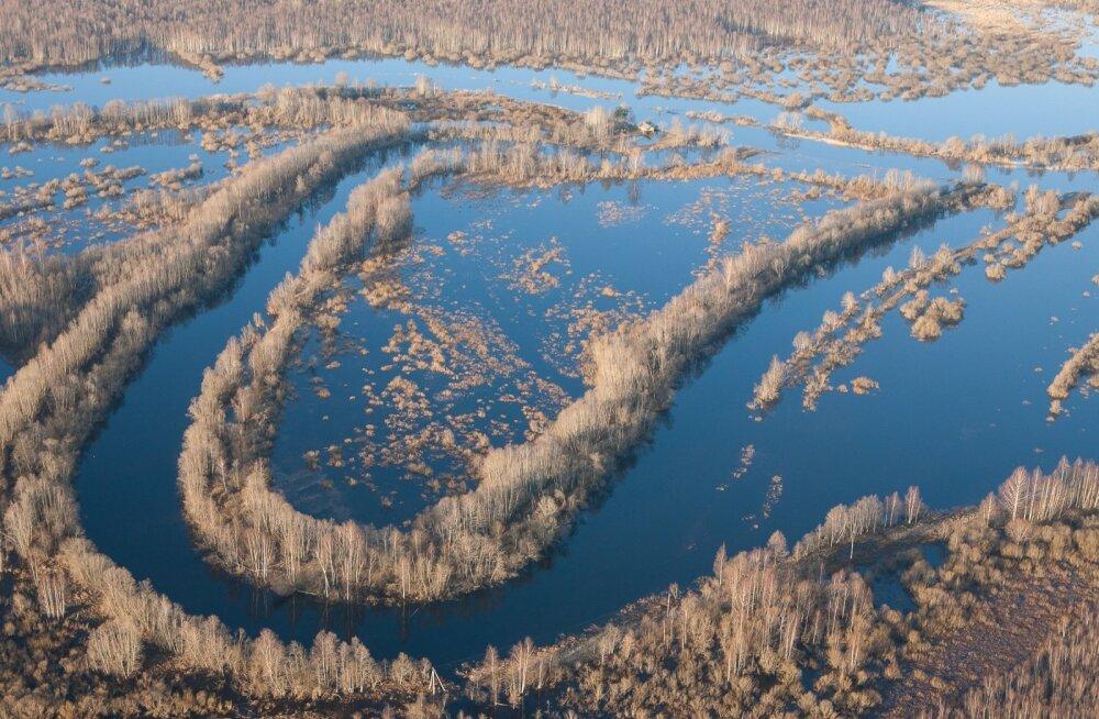 Emajõgi kevadise suurvee ajal jürikuus Puhja vanajõe looke kohal.