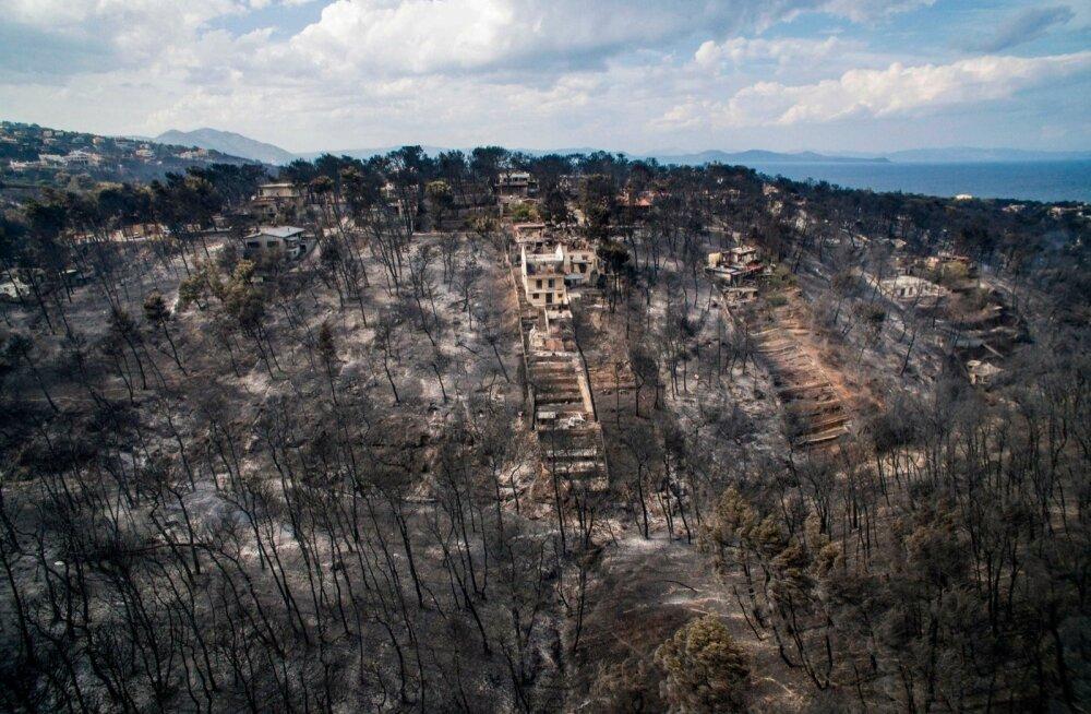 FOTOD | Kreeka maastikupõlengus hukkunute arv on tõusnud 79-ni
