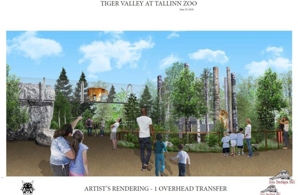 Начинается проектирование Долины тигров Таллиннского зоопарка