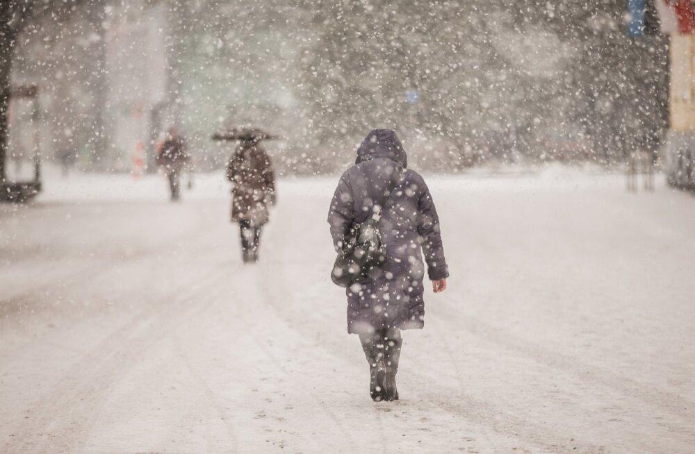 Lõuna-Soome lubatakse tuisku ja kuni 30 sentimeetrit lund