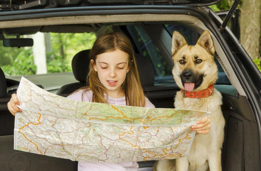 Reisimise ABC: millega pead arvestama, kui plaanid koos lemmikloomaga reisile minna?