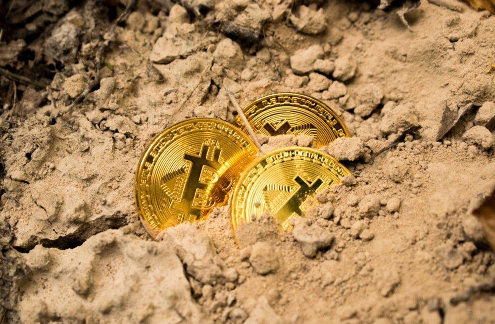 Mis juhtus krüptoturuga pärast Bitcoini pooldumist?